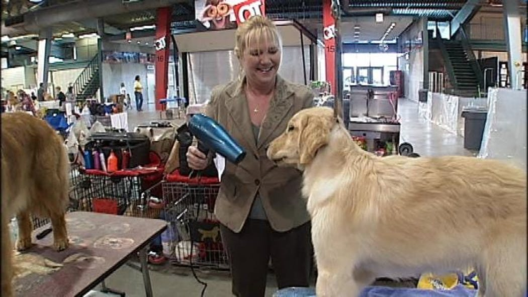 Tulsa Roundup Show Is A Dog Lovers Paradise