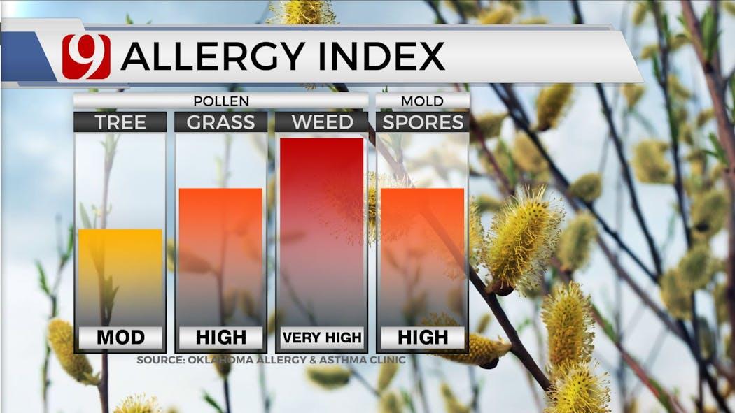 Hello Allergies